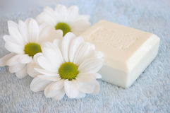 Beauty. Three white daisies and a soap on a blue towel Royalty Free Stock Photo