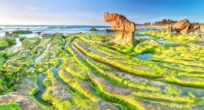 Beauty of the ancient stone mossy stone Royalty Free Stock Photo