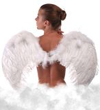 Beauty angel Royalty Free Stock Image