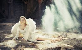 Beauty angel Stock Photos