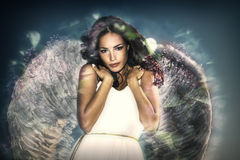 Beauty angel royalty free stock photos