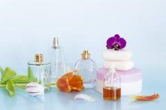 Beauty arrangement royalty free stock photography