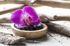Beauty atmosphere with zen pebbles and orchid Stock Photo