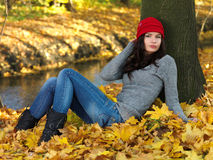 Beauty during autumn Stock Image