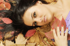 Beauty on autumn Stock Images