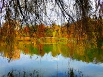 Beauty autumn colors Royalty Free Stock Images