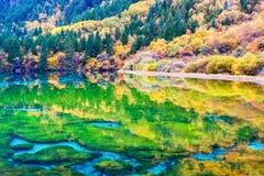 Beauty autumn in jiuzhaigou Royalty Free Stock Images