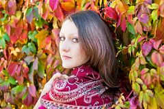 Beauty autumn portrait Royalty Free Stock Image