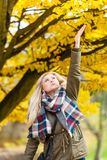 Woman walking in park, touching golden leafs royalty free stock image