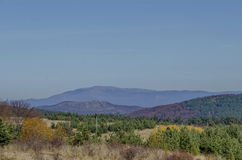 Beauty autumnal color in Plana mountain toward Rila mountain Royalty Free Stock Image
