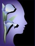 Beauty Background Stock Photography