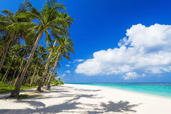 Beauty beach Stock Photography