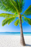 Beauty beach Royalty Free Stock Image
