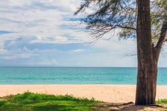 Beauty beach Stock Photos