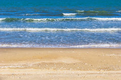 Beauty beach with shell Royalty Free Stock Photography