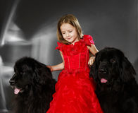 Beauty and the Beast. Girl with big black water-dog. Stock Photo