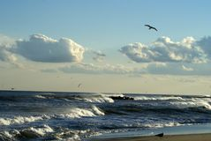Beauty of Belmar. This is the New Jersey shoreline at Belmar, NJ Stock Image