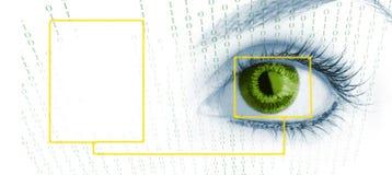 Beauty big eye. Stock Photo
