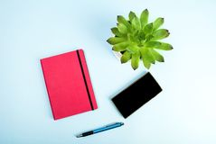 Beauty blog concept photo. Green plant, notebook, pen and mobile phone on blue background royalty free stock image