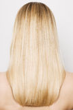 Beauty blonde hairs. Back of beauty blonde hairs Royalty Free Stock Photo