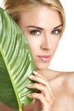 Beauty blonde woman with a green leaf on white Royalty Free Stock Image