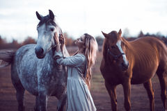 Beauty blondie with horse in the field,  effect Royalty Free Stock Image