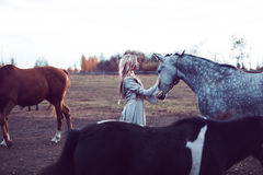 Beauty blondie with horse in the field, effect of toning royalty free stock image