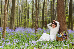 Beauty in bluebells forest Stock Photo