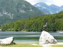 The Beauty of Bohinj Stock Photo