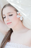 Beauty bride Stock Photography