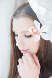 Beauty bride Royalty Free Stock Photos