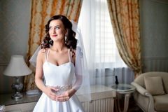 Beauty bride in bridal gown with lace veil indoors. Beautiful model girl in a white wedding dress. Female portrait of cute lady. Woman with hairstyle Stock Image