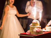 Beauty bride and handsome groom are cutting a wedding cake. Royalty Free Stock Images