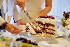 Beauty bride and handsome groom are cutting a wedding cake. wedding royalty free stock images
