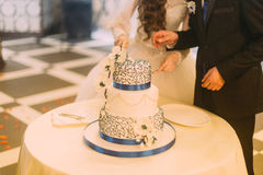 Beauty bride and handsome groom are cutting white wedding cake decorated with blue riband Royalty Free Stock Photos