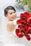 Beauty bride in wedding dress. Stock Images