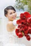 Beauty bride in wedding dress. Stock Images