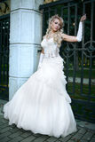 Beauty bride in white dress Royalty Free Stock Images