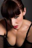 Beauty brunette Royalty Free Stock Image