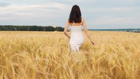 Beauty brunette girl with healthy long hair spinning and laughing outdoor on golden wheat field. Enjoying nature. Young