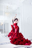Beauty Brunette model woman in  evening red dress Royalty Free Stock Image