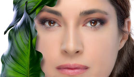 Beauty Brunette Woman. Skin Treatment. Spa. Spa beauty woman with green leaves on white background Royalty Free Stock Image
