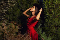 Beauty brunette women in red dress & hat pose at night park. Stock Photos
