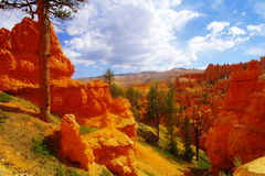 The beauty of Bryce Canyon. Stock Photos