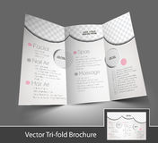 Beauty Care & Salon Tri-Fold Brochure Stock Photography