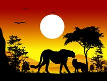 Beauty cheetah silhouettes with landscape background Stock Photo