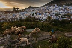 Beauty of Chefchaouene, town with white and blue colors in Moroc Stock Photos