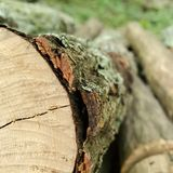 The beauty of chopped wood royalty free stock photography