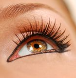 Beauty close eye. Stock Images