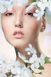 Beauty of woman and sakura Royalty Free Stock Photos